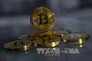 Một số nước muốn siết chặt quản lý tiền ảo, đồng bitcoin rớt giá mạnh