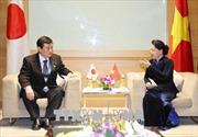 Chủ tịch Quốc hội Nguyễn Thị Kim Ngân tiếp Trưởng đoàn Nghị viện Nhật Bản