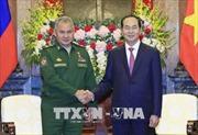 Chủ tịch nước Trần Đại Quang tiếp Bộ trưởng Bộ Quốc phòng Liên bang Nga