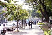 Thời tiết ngày 24/1: Bắc Bộ hửng nắng, Nam Bộ mưa dông