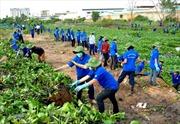Tuổi trẻ chung tay xây dựng nông thôn mới - Cơ hội để phát huy sức trẻ