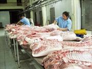 Thịt lợn tươi ở Hà Nội không có chất cấm