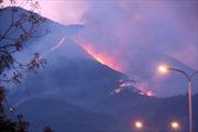 Cháy rừng đặc dụng Nam Hải Vân