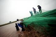 Thái Bình thiệt hại nghiêm trọng do mưa bão