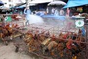 Nguy cơ cao bùng phát dịch bệnh chăn nuôi