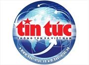 Làm rõ kiến nghị của người dân về Dự án điện gió tại Bình Định