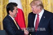 Thủ tướng Nhật Bản thăm Mỹ liên quan cuộc gặp thượng đỉnh Mỹ - Triều