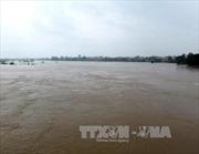 Lũ trên các sông từ Quảng Bình đến Quảng Ngãi có khả năng lên lại
