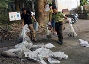 Bắt giữ vụ buôn lậu hơn 20 cá thể động vật hoang dã