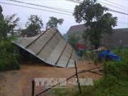 Bình Định hỗ trợ xây nhà cho hộ có nhà bị sập, hư hỏng do bão lũ