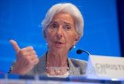 Máy bay chở Tổng giám đốc IMF phải hạ cánh khẩn cấp