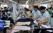 Kinh tế tư nhân - động lực tạo sự tăng trưởng đột phá cho TP. Hồ Chí Minh