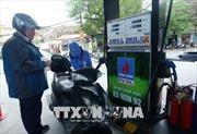 Tiếp tục giữ ổn định giá xăng dầu