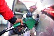 Giá dầu châu Á tăng sau thông tin về cuộc gặp Mỹ - Triều Tiên