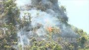 Cháy rừng phòng hộ tại Trạm Tấu, Yên Bái