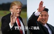 IAEA và EU kỳ vọng vào cuộc gặp thượng đỉnh Mỹ - Triều Tiên