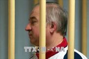 Căng thẳng quanh vụ điệp viên Skripal: Thụy Điển triệu Đại sứ Nga liên quan đến các tuyên bố về chất độc