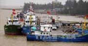 Thời tiết biển ngày 19/3: Vịnh Bắc Bộ mưa rào, biển động