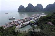Nhân Ngày nước thế giới 22/3: Bài 2 - Thúc đẩy doanh nghiệp bảo vệ môi trường Vịnh Hạ Long