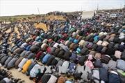 Biểu tình tại Dải Gaza: Khoảng 500 người thương vong