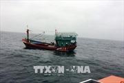 Ứng cứu kịp thời một thuyền viên bị tời quấn mất bàn tay