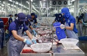 'Cánh cửa' sang thị trường Mỹ vẫn mở với cá tra Việt Nam