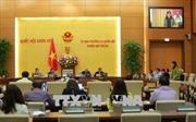 Công bố Nghị quyết thành lập thị xã Phú Mỹ, tỉnh Bà Rịa- Vũng Tàu