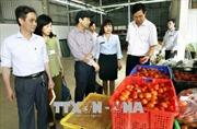 Hà Nội phát triển các mô hình kiểm soát thực phẩm vì an toàn và sức khỏe của người tiêu dùng