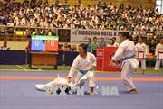 Việt Nam giành 29 Huy chương Vàng tại Giải Vô địch Karate Đông Nam Á
