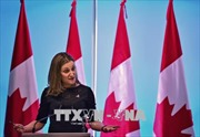 Canada, EU tuyên bố đáp trả tương xứng quyết định áp thuế của Mỹ