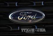 Hãng Ford bị chỉ trích vì ô tô có hiệu suất nhiên liệu thấp nhất