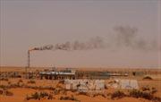 Giá dầu ngọt nhẹ Mỹ giảm tại thị trường châu Á