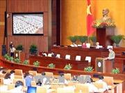 Cho ý kiến hai dự thảo Luật và dự kiến Chương trình giám sát của Quốc hội năm 2019