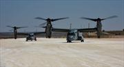 Chiêm ngưỡng dàn máy bay Mỹ 'thả dáng' tại căn cứ Syria