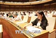 Quốc hội thông qua Luật Thể dục, thể thao sửa đổi