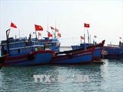 Cảnh báo mưa dông mạnh vùng biển từ Cà Mau đến Kiên Giang