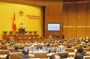 Cử tri Bình Thuận đề nghị tăng cường tuyên truyền, giúp người dân hiểu rõ về các dự án luật