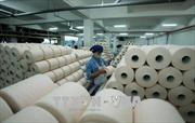 Tác động đa chiều từ chiến tranh thương mại: Việt Nam cần chủ động
