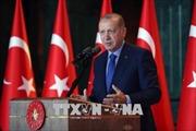 Thổ Nhĩ Kỳ sẵn sàng xây dựng kênh đào mới giảm tải cho eo biển Bosporus