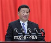 Chủ tịch Trung Quốc thăm UAE