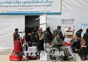 Tổng thống Nga - Pháp thảo luận về viện trợ nhân đạo cho Syria