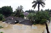 Mưa lũ nghiêm trọng tại bang Kerala, Ấn Độ làm 67 người thiệt mạng