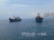 Chưa chấp thuận việc nhận chìm 2,5 triệu m3 chất nạo vét xuống biển Quảng Bình