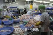 Phát tán thông tin sai lệch về cá tra Việt tại thị trường Romania