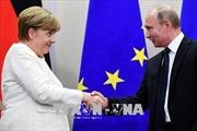 Đảng Cánh tả Đức đặt kỳ vọng lớn vào quan hệ Đức-Nga