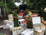 2,4 tấn rau, củ, quả không có nguồn gốc bị tuồn vào Quảng Ninh