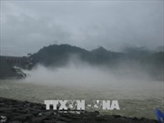 Thủy điện Hòa Bình đóng một cửa xả đáy vào 12 giờ ngày 23/7