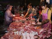 Tiềm ẩn nguy cơ phá vỡ các cân đối của ngành hàng thịt lợn