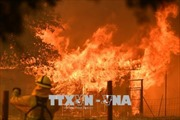 14.000 lính cứu hỏa chống chọi với cháy rừng ở Mỹ và châu Âu