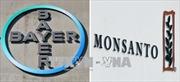 Bất chấp bê bối, Bayer vẫn sáp nhập công ty hoá chất Monsanto vào tập đoàn